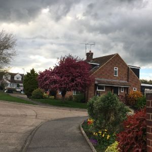 Coombe Rise, Chelmsford, CM1