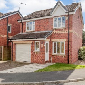 Shuttle Close, Doncaster, DN11